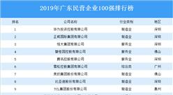 2019年廣東省民營企業100強排行榜