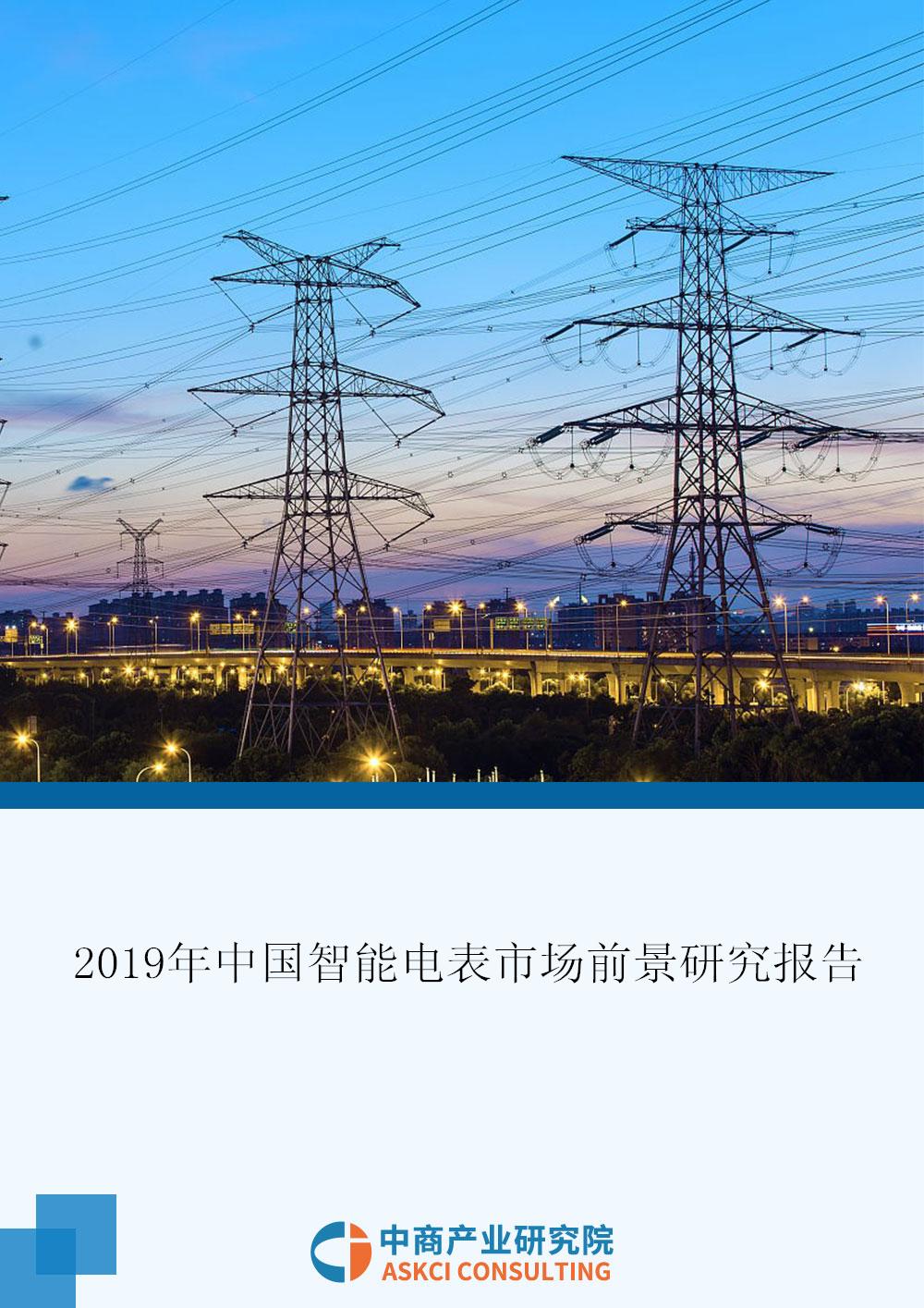 2019年中国智能电表市场前景研究报告