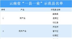 """云南省""""一县一业""""示范县名单出炉:共20个县区入列(附详细名单)"""