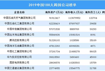 2019中国100大跨国公司排行榜