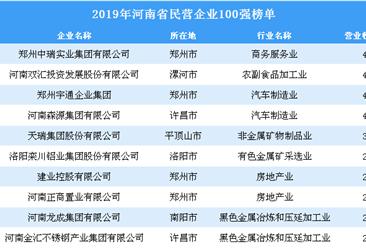 2019年河南省民营企业100强排行榜