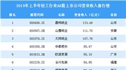 2019年上半年轻工行业AB股上市公司营业收入排行榜