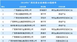 2019年广西民营企业纳税10强排行榜