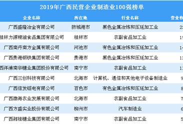 2019年广西民营企业制造业100强排行榜(全榜单)
