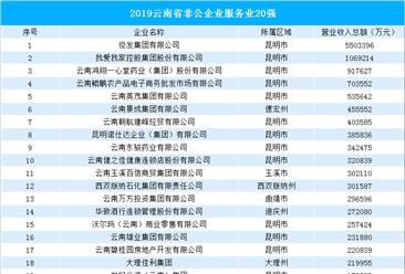 2019年云南省非公企业服务业20强排行榜(附完整榜单)
