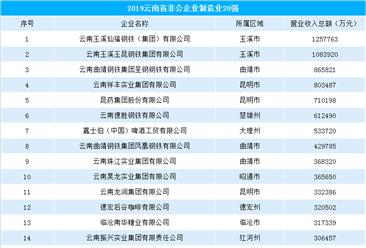 2019年云南省非公企业制造业20强排行榜(附榜单)