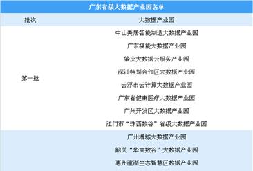 珠三角大數據產業最具創新活力 廣東省級大數據產業園有哪些?(附名單)