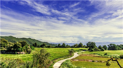 廣東省首批文化和旅游特色村公示名單出爐:100個村中有你的家鄉嗎?