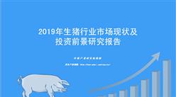 中商产业研究院:《2019年中国生猪行业市场现状及投资前景研究报告》发布