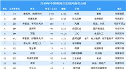 2019年胡潤百富榜上榜企業家排行榜(河南省分榜)