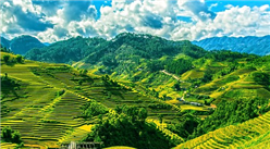 時隔23年中國再發糧食白皮書  口糧實現完全自給(附白皮書全文)