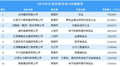 2019年江西民營企業100強排行榜