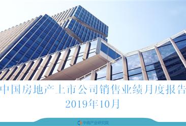 2019年10月中国房地产行业经济运行月度报告(完整版)