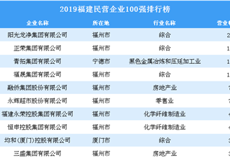 2019福建民营企业100强排行榜
