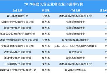 2019福建民营企业制造业50强排行榜