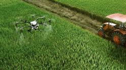 农业农村部:加快数字农业建设 提高农业智能化水平  (图)