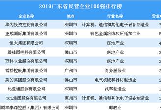 2019年广东省民营企业100强排行榜