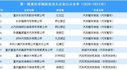 第一批重庆市制造业龙头企业公示名单(2020-2021年)