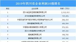 2019年四川省企业利润10强排行榜