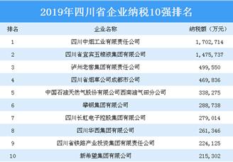 2019年四川省企业纳税10强排行榜