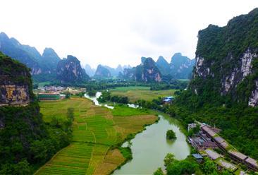 2020年河南省农村经济社会发展报告(全文)