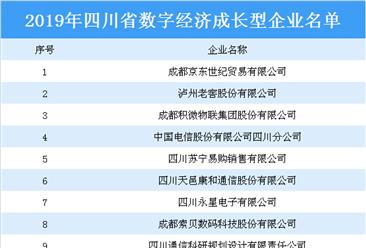 2019年四川省数字经济成长型企业名单:泸州老窖等12家企业上榜(附名单)