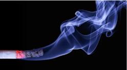 工信部:进一步深化烟草等重点领域改革  2020年中国烟草行业发展现状分析(附图表)