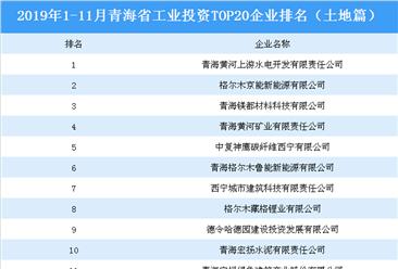 产业地产投资情报:2019年1-11月青海省工业投资top20企业排名(土地篇)