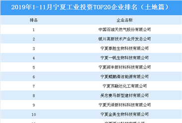产业地产投资情报:2019年1-11月宁夏工业投资top20企业排名(土地篇)
