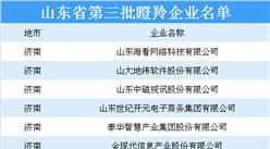 山东省第三批瞪羚企业名单出炉:141家入围