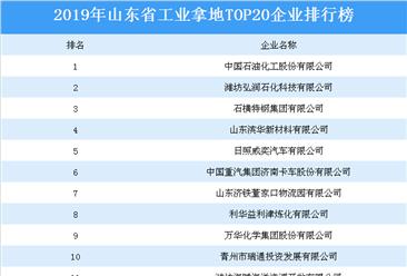 产业地产投资情报:2019年山东省工业拿地top20企业排名(土地篇)