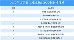 产业地产投资四虎影视网址:2019年江西省工业拿地TOP20企业排名(土地篇)