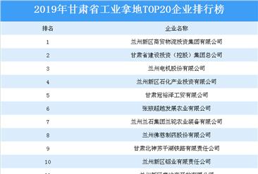 产业地产投资情报:2019年甘肃省工业拿地top20企业排名(土地篇)