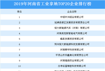 产业地产投资情报:2019年河南省工业拿地top20企业排名(土地篇)