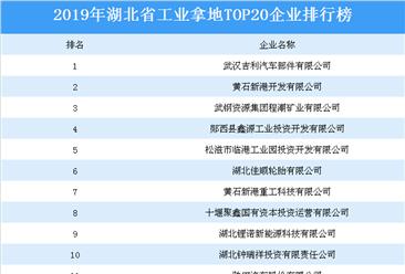 产业地产投资情报:2019年湖北省工业拿地top20企业排名(土地篇)