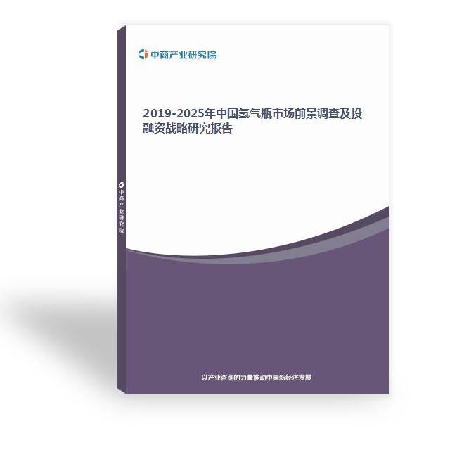 2019-2025年中国氢气瓶市场前景调查及投融资战略研究报告