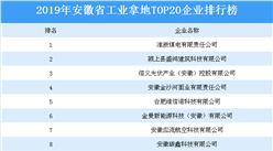 产业地产投资情报:2019年安徽省工业拿地TOP20企业排名(土地篇)