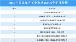 产业地产投资四虎影视网址:2019年黑龙江省工业拿地TOP20企业排名(土地篇)