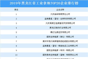 产业地产投资情报:2019年黑龙江省工业拿地top20企业排名(土地篇)