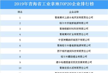 产业地产投资情报:2019年青海省工业拿地top20企业排名(土地篇)