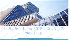 2019年12月中國房地產行業經濟運行月度報告(完整版)