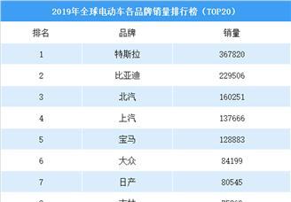 2019年全球电动车品牌销量排行榜(TOP20)