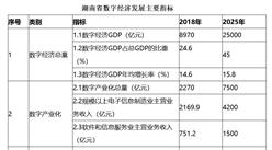 湖南发布数字经济发展规划:2025年数字经济规模进入全国前10强(全文)
