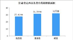 2020年甘肃省定西市中医药产业发展现状分析报告(全文)