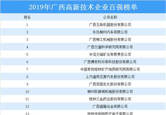 2019年广西高新技术企业百强排行榜