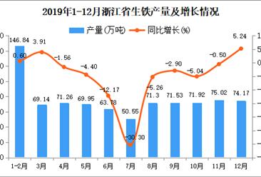 2019年浙江省生铁产量及增长情况分析
