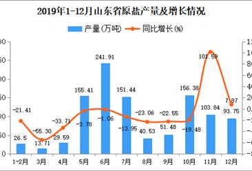 2019年山东省原盐产量为1071.75万吨 同比下降6.22%