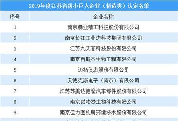2019年度江苏省小巨人企业(制造类)名单出炉:共100家(附全名单)