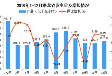 2019年湖北省发电量为2896.4亿千瓦小时 同比增长5.74%