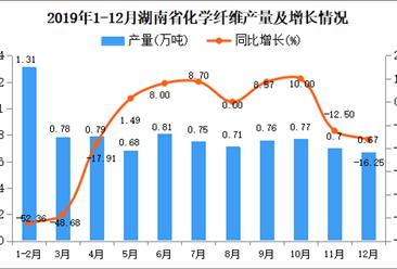 2019年湖南省化学纤维产量为8.91万吨 同比下降17.19%